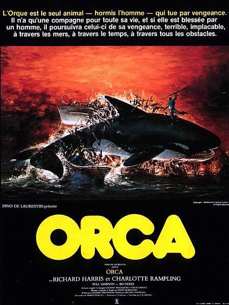 orca-film-4679