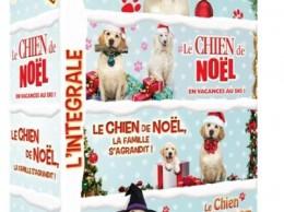 Coffret-Chien-de-Noel-4-films-DVD